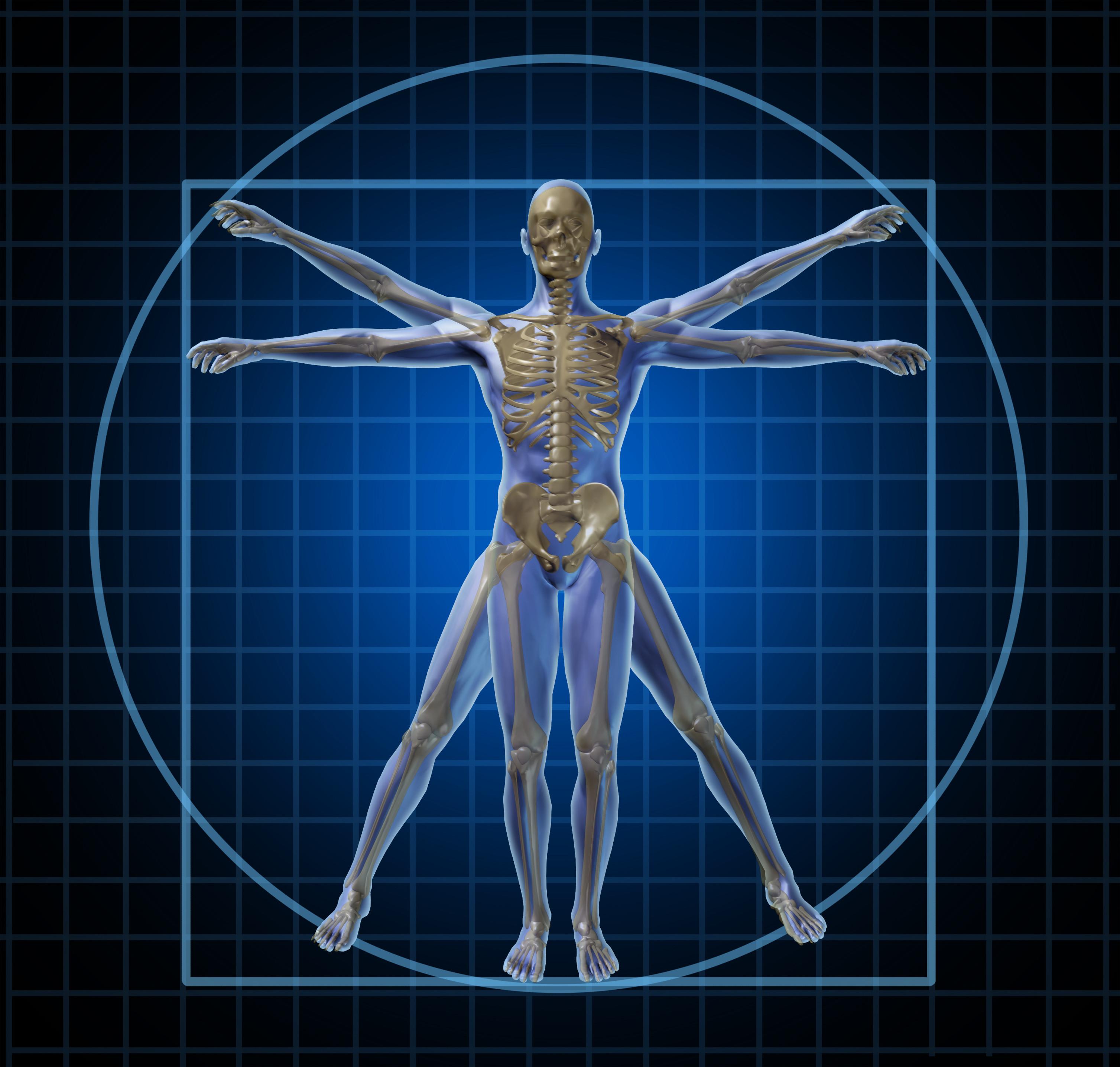 VTCT Level 3 – Anatomy & Physiology | www.skinastute.com